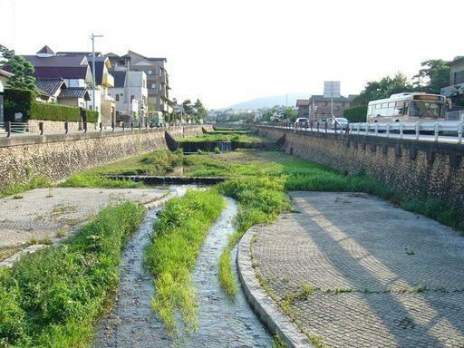 逆瀬川のほとり