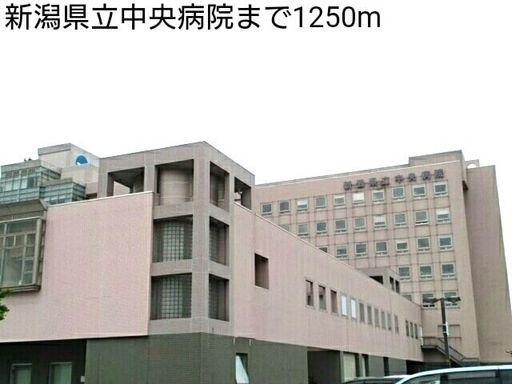 新潟県立中央病院 1250m