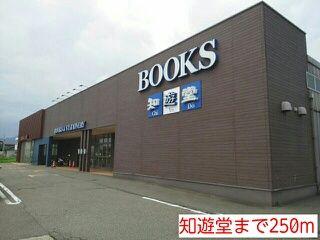大型書店 250m