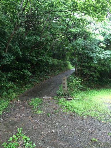 沼津土肥線(県道17号)からの入口
