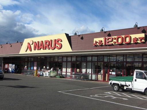 上越市子安新田 ナルス鴨島店 700m