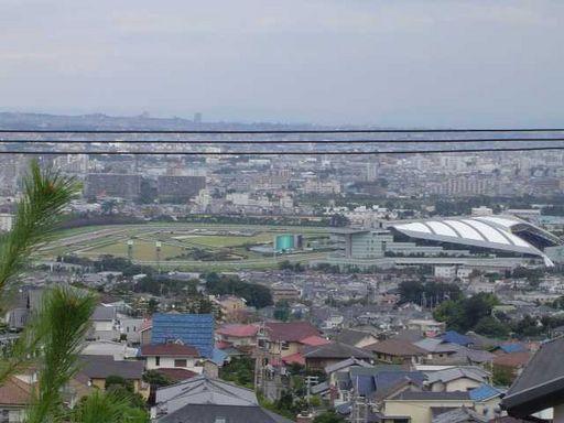 阪神競馬場♪