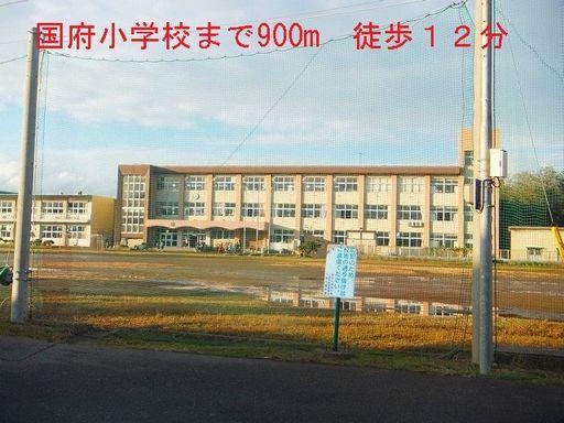国府小学校 900m